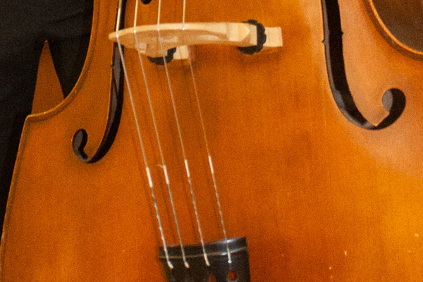 Double Bass 1